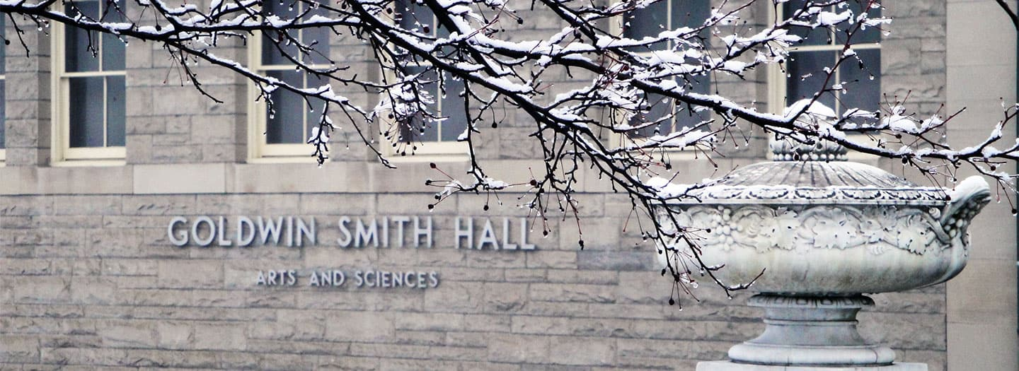 Goldwin Smith Hall snow