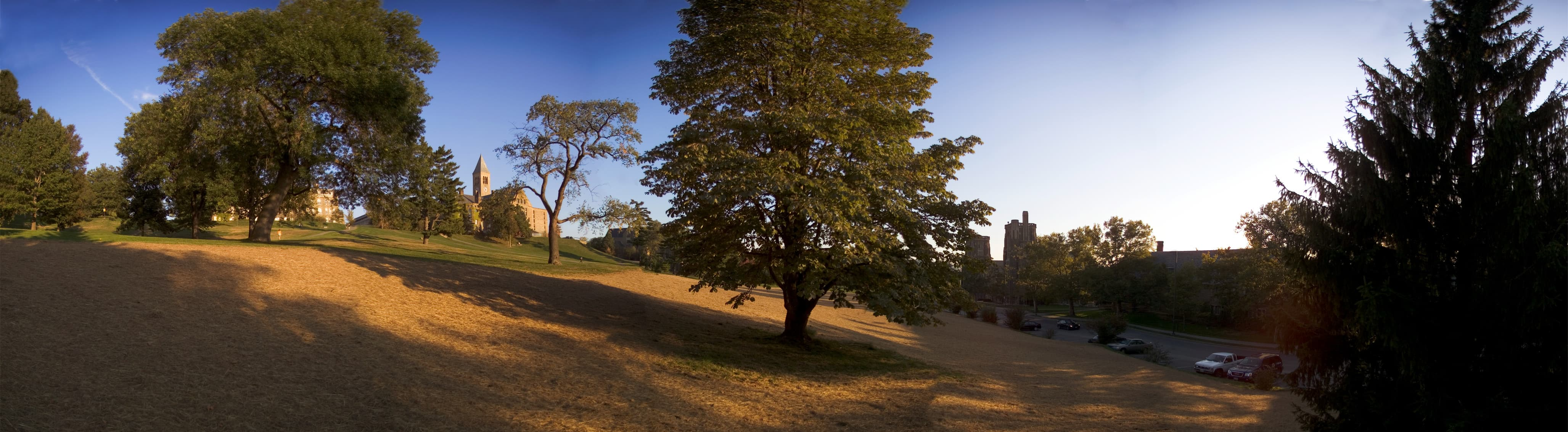 Cornell landscape