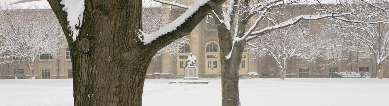 goldwin smith in snow